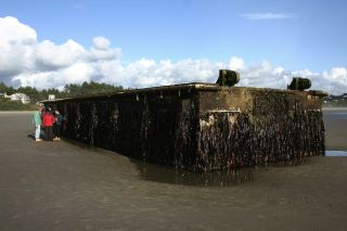 Japanese dock the washed ashore in Oregon after 2011 tsunami.