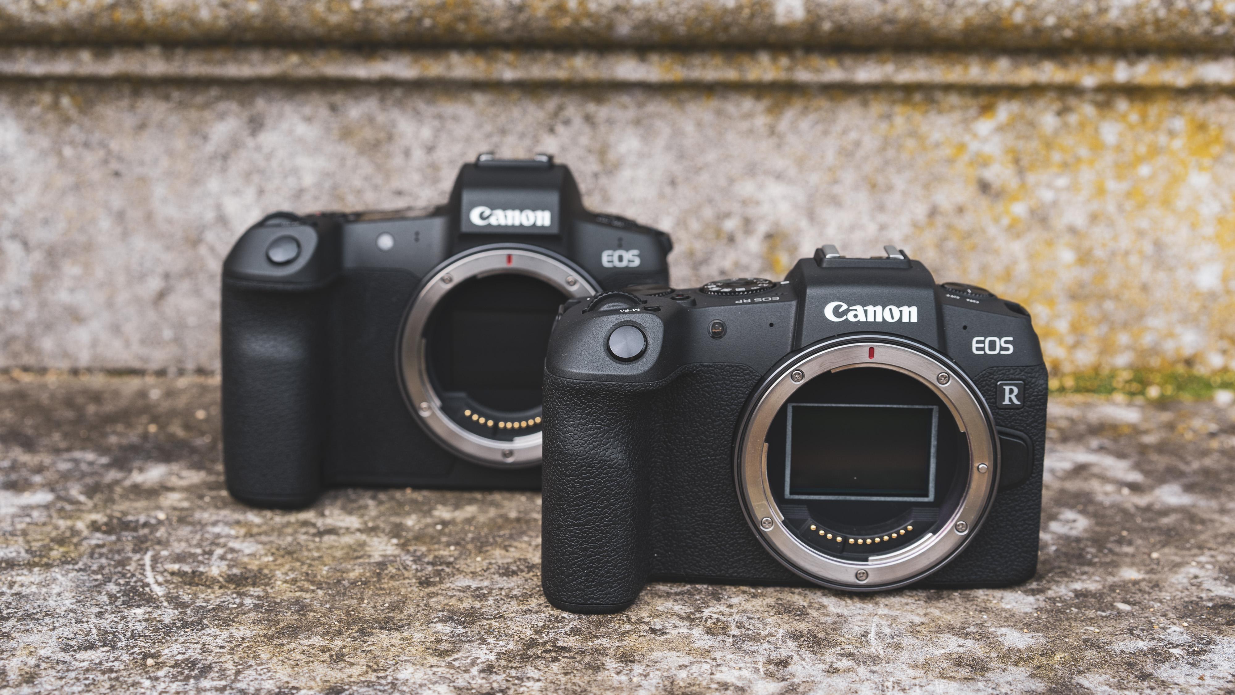 Canon EOS R vs EOS RP: 10 principales différences que vous devez savoir