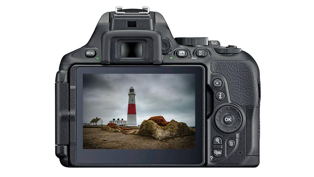 Nikon D5300 vs Nikon D5600: Which camera should you buy