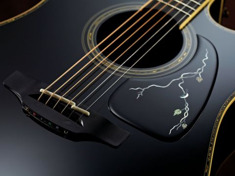 The black-on-black scratchplate exudes class, even if it looks too good to touch