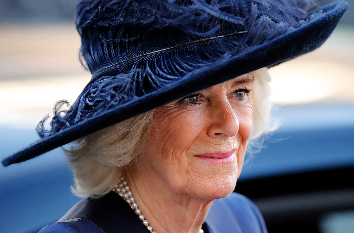 duchess camilla praised touching article important cause