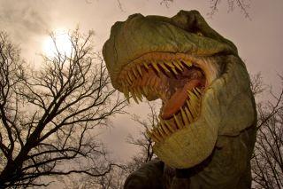 t-rex-02