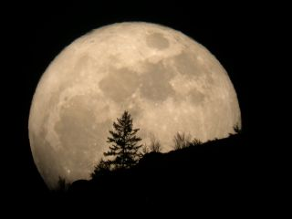 Skywatcher Tim McCord of Entiat, Washington, caught this amazing view of the March 19, 2011, supermoon just as it was rising.