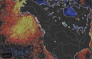 """This image shows recent warmer than average (warmer colors) ocean temperatures near Alaska corresponding to the """"Blob."""""""