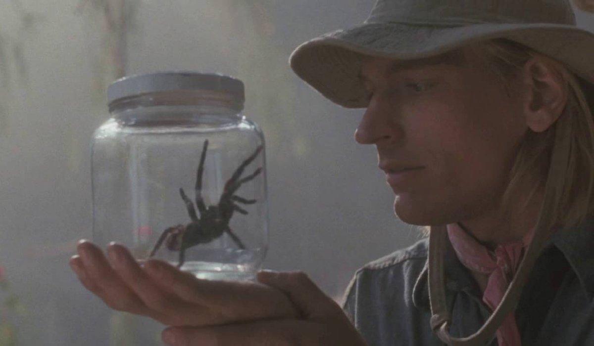 Arachnophobia a researcher studies a jarred spider