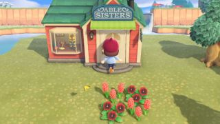 Animal Crossing: New Horizons tailor