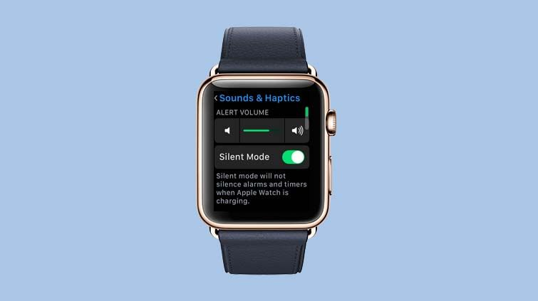 How to Mute Your Apple Watch or Change Ring/Alert Sounds - How to
