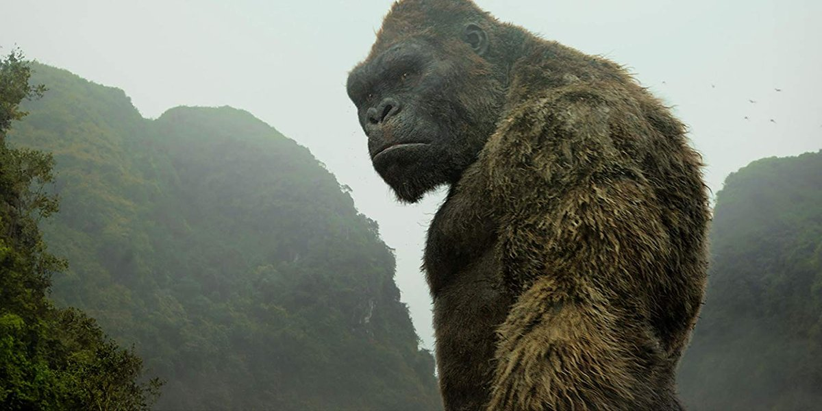 Good News, Godzilla Vs. Kong's Director Confirms Movie Is 'In The Home Stretch' - CINEMABLEND