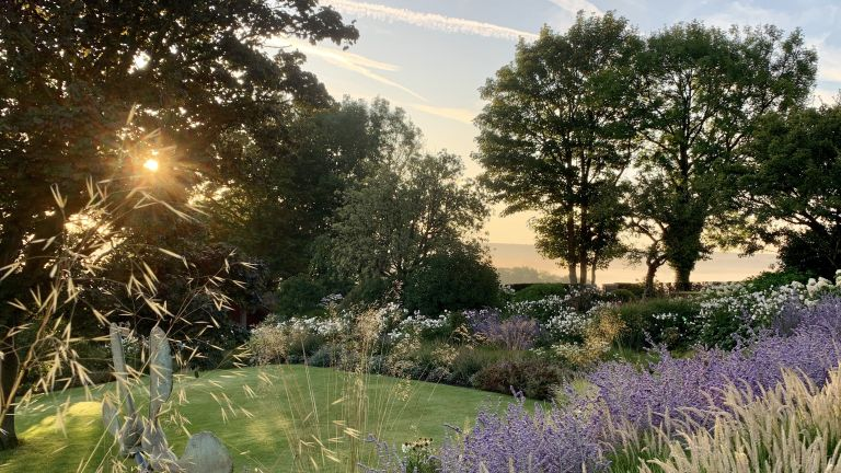 Changing garden design habits, large garden with a sunset