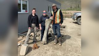 Members of the team pose with some of the mammoth bones that were found in Little Flake Mine near Dawson City in the Yukon.