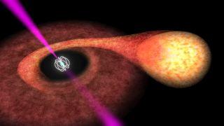 Pulsar in Binary System