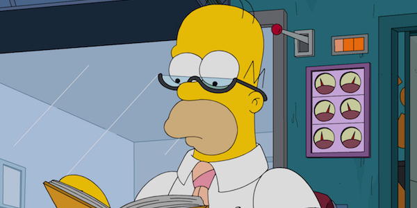 homer simpson reading the simpsons