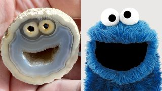 A rock collector in Brazil found this agate, a type of volcanic rock, that looks just like Cookie Monster.