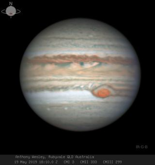 Amateur astronomer Anthony Wesley captured this view of Jupiter and its Great Red Spot on May 19, 2019, from the town of Rubyvale in Queensland, Australia.