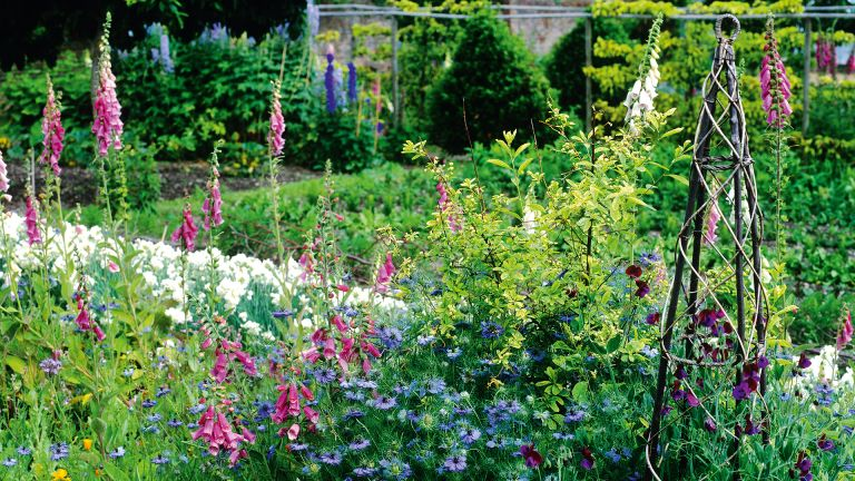Monty Don's plant support tip