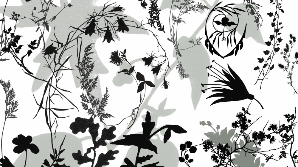 Photoshop brushes: plant