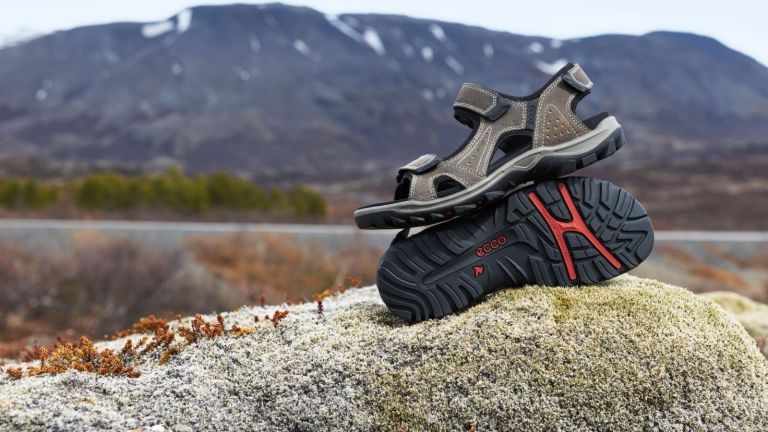 af099f495a34 Best walking sandals 2019  walking sandals with mountains and water in the  background