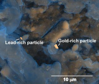 gold in poop