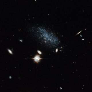 Hubble image of the faint, blue dwarf galaxy Pisces B surrounded by brighter, distant galaxies.