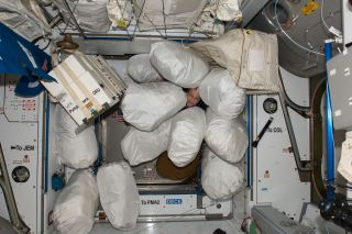 NASA astronaut Don Pettit poses with stowage bags on the International Space Station in 2012.