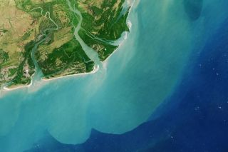 Zambezi river delta from space