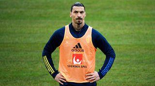 Sweden Euro 2020 squad