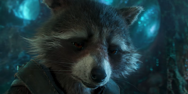 Rocket looking dour in Guardians of the Galaxy Vol. 2