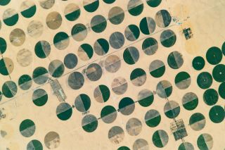 These crop circles have been created using a technique called center-pivot irrigation.