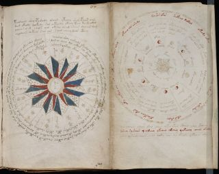 Two pages of the 240-page Voynich manuscript.
