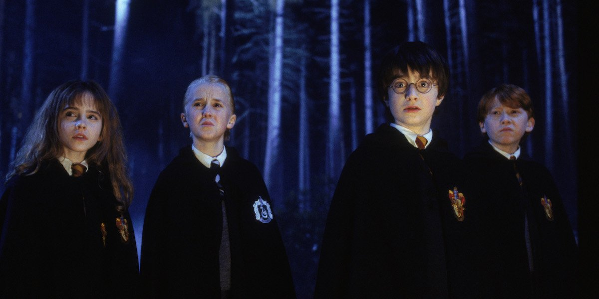 Hermione, Draco, Harry and Ron stand in the Forbidden Forest in 'Harry Potter and the Chamber of Secrets'