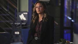 Why Vanessa Lachey's NCIS: Hawai'i Actually Pairs Perfectly With NCIS Season 19