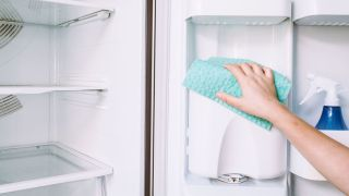 How to clean a refrigerator in ten easy steps