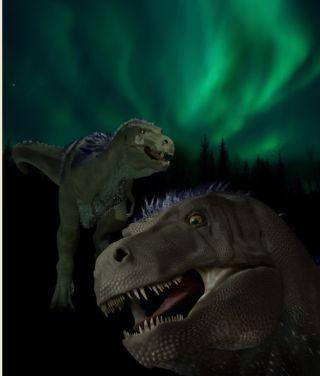 miniature arctic tyrannosaur faces