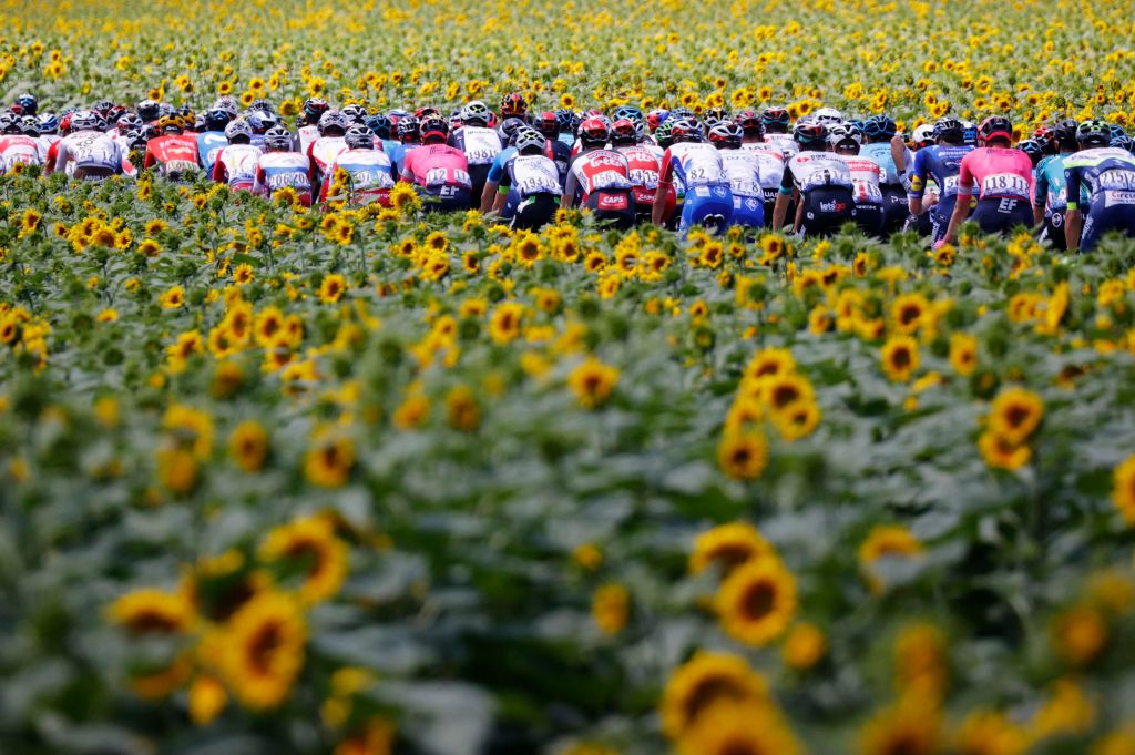 The pack rides during the 14th stage of the 108th edition of the Tour de France cycling race 183 km between Carcassonne and Quillan on July 10 2021 Photo by Thomas SAMSON AFP Photo by THOMAS SAMSONAFP via Getty Images