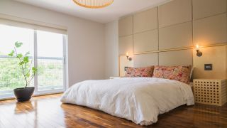 What is feng shui? Image of bedroom with money tree