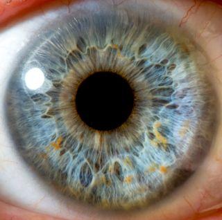 eye, close up, eyeball