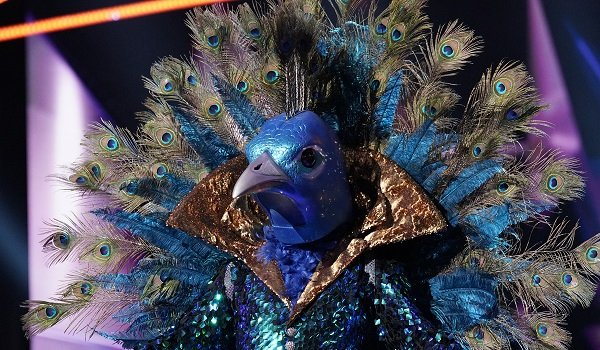 The Peacock The Masked Singer