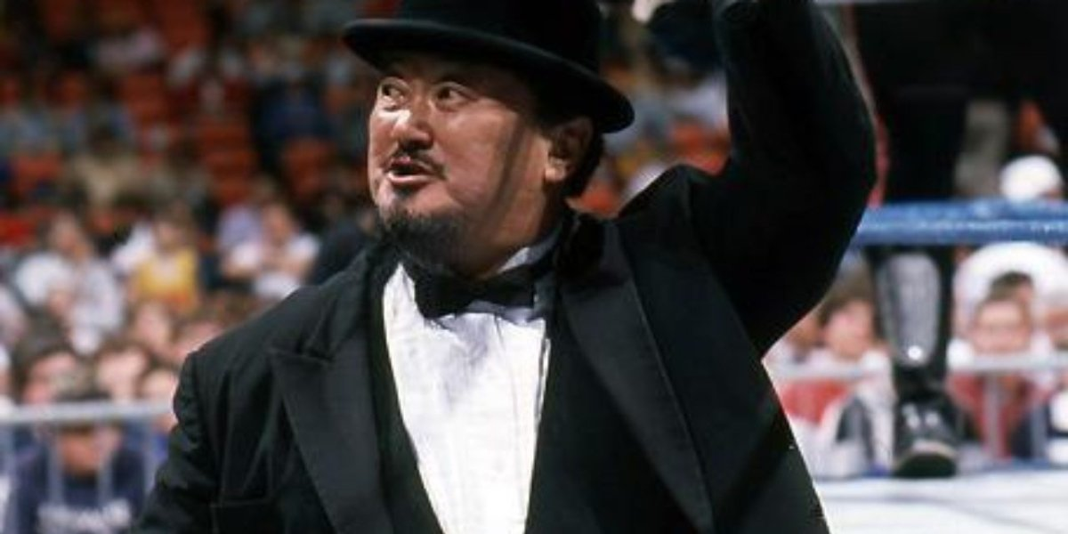 Mr. Fuji on WWE Programming