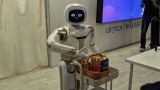 UBTech Walker Robot