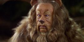 Apparently The Wizard Of Oz's Cowardly Lion Costume Was Made From Real Lion Fur