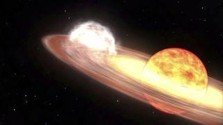 Star V407 Cyg Explodes