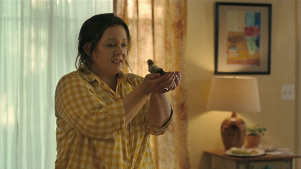 The Starling is expected to be Netflix's next hit—here's everything you need to know about Melissa McCarthy's tearjerker - Woman
