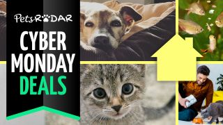 Pets at Home cyber monday deals