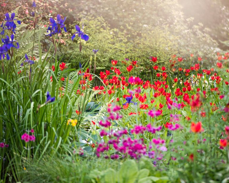top gardening mistakes