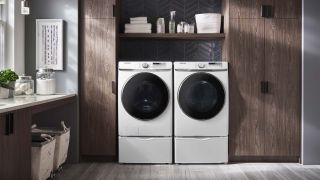 Samsung WF45R6300AW washing machine