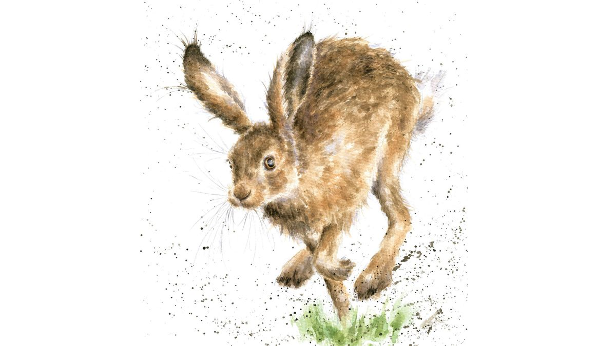 Paint a mischievous hare in watercolour