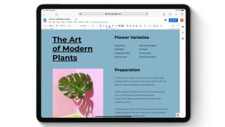 A Google Docs desktop-class website with touch optimization for iPadOS. Picture credits: Apple