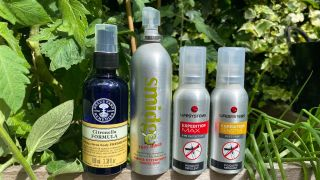 Best insect repellents: a collection of repellent bottles