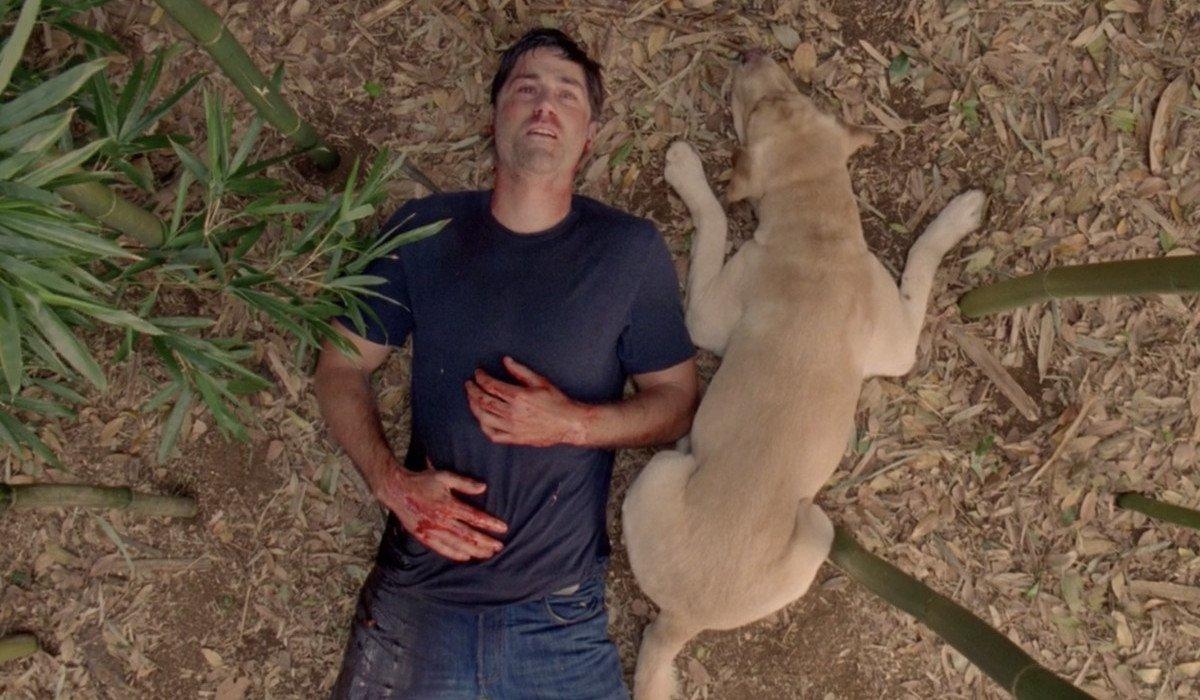 Jack Shepard dies in Lost season finale