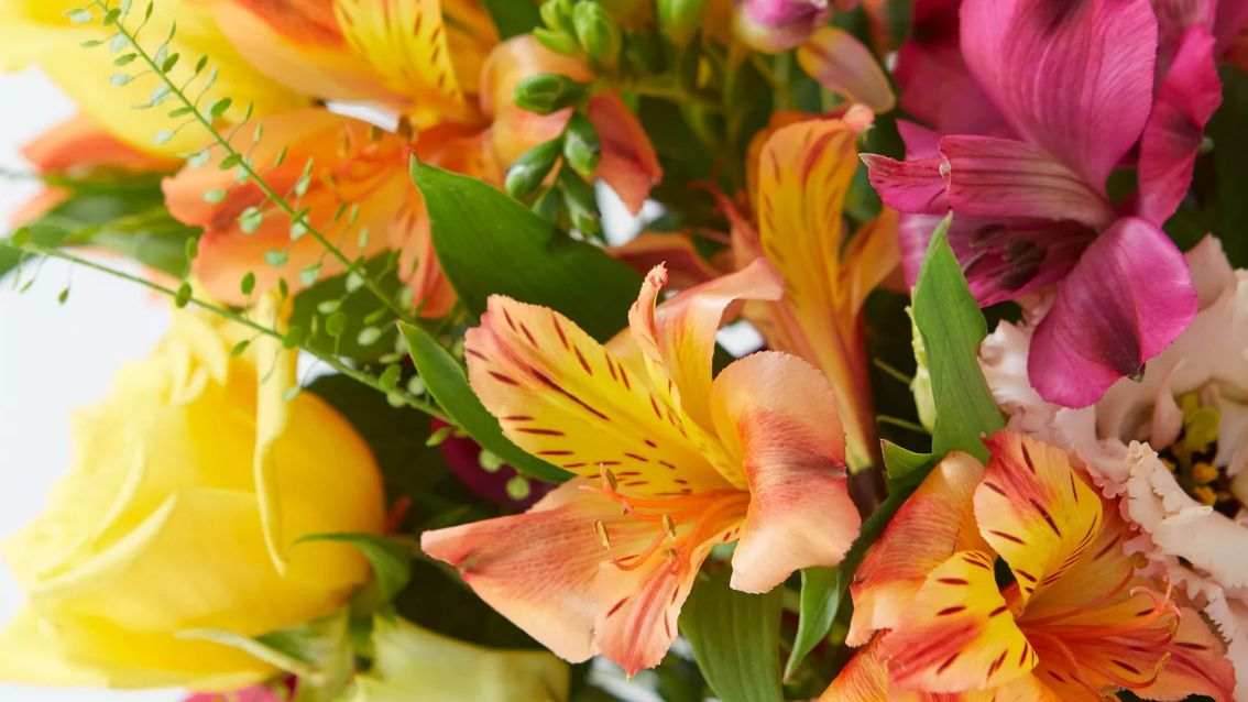 The best Mother's Day flowers: send beautiful flowers by post this weekend